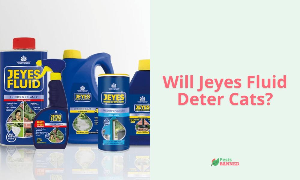Will Jeyes Fluid Deter Cats