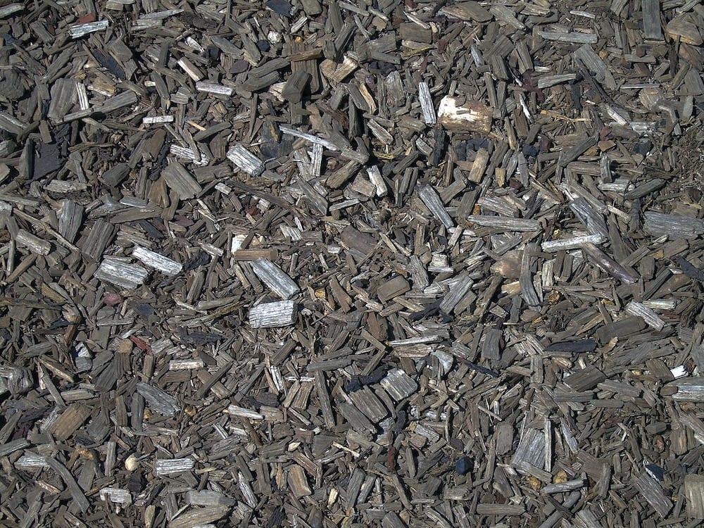 Bark Chippings Deter Slugs
