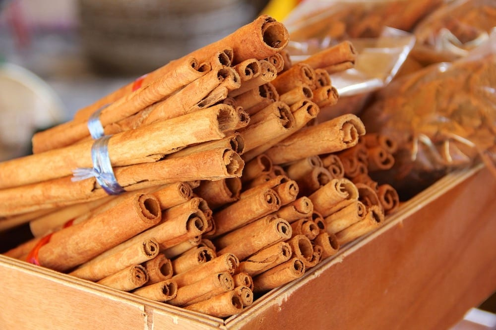 Does Cinnamon Deter Squirrels