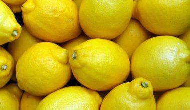 Does Lemon Deter Cats